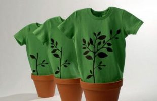 El consumidor y la ropa ecológica