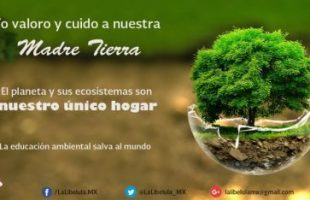 Ropa Verde Ropa Ecologica.jpg