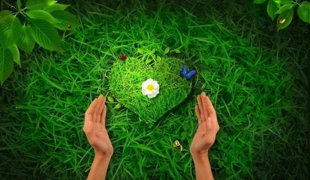 vivir en armonia con la naturaleza